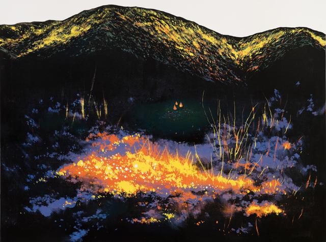 , 'Fire in Wilderness,' 2016, Liang Gallery