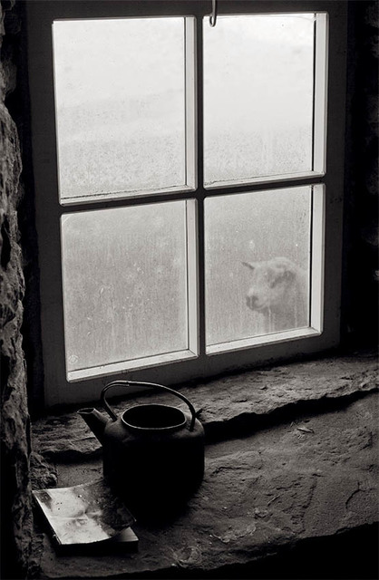 , 'Rackwick, Hoy, Orkney,' 2016, The Photographers' Gallery