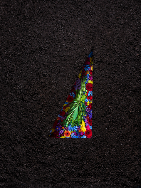 , 'Dirt and Flowers (Inverted),' 2018, Winston Wächter Fine Art