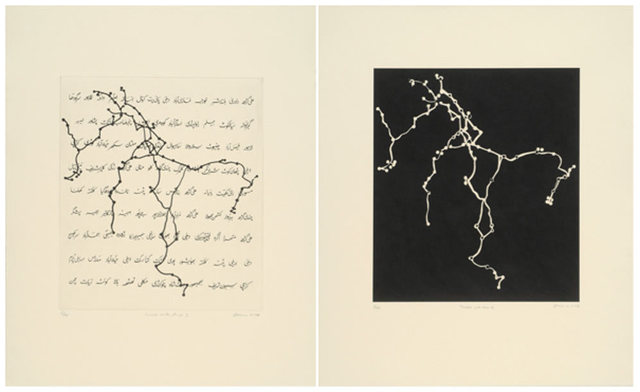 , 'Travels with Rani,' 2008, Jeanne Bucher Jaeger