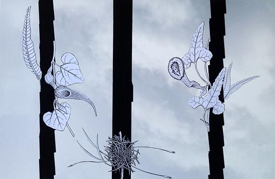 Emilia Sandoval, 'Fijación II', 2018, Galería Quetzalli