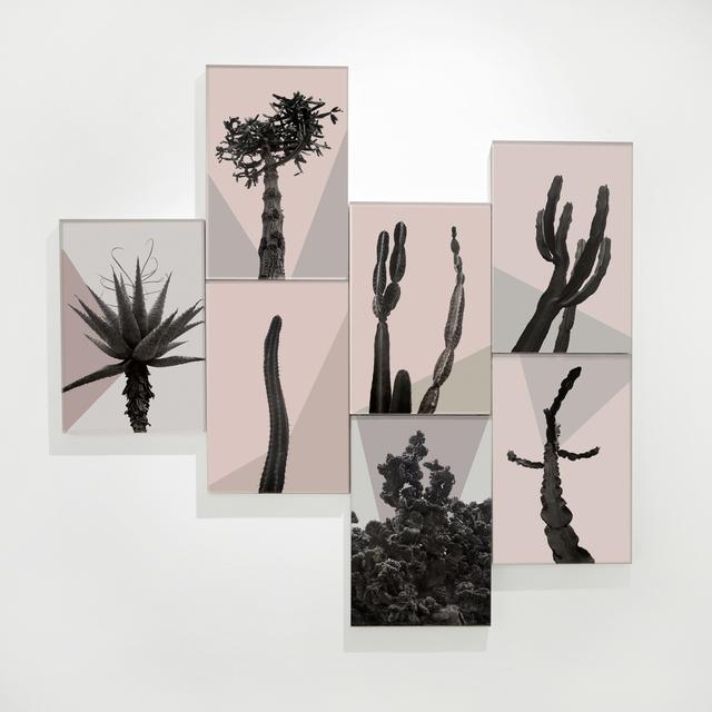 , 'Os Sexos,' 2015, Carbono Galeria