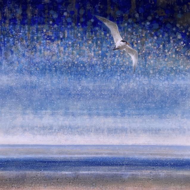 , 'Tern #2,' , Stremmel Gallery