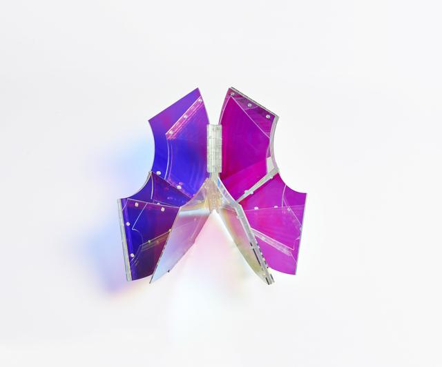 , 'Ring,' 2013, Cecilia de Torres Ltd.