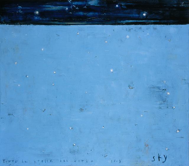 , 'Sky, Tutte le stelle del cielo,' 2007, Barbara Mathes Gallery
