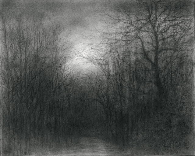 Sue Bryan, 'The Woods We Have Found to Walk', 2018, Carrie Haddad Gallery