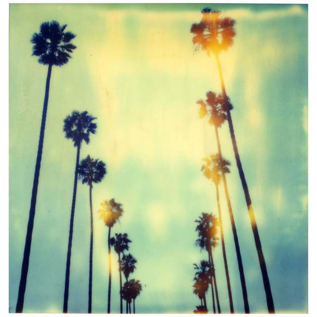 Stefanie Schneider, 'Palm Trees at Wilcox', 1999, Photography, Digital C-Print based on a Polaroid, not mounted, Instantdreams