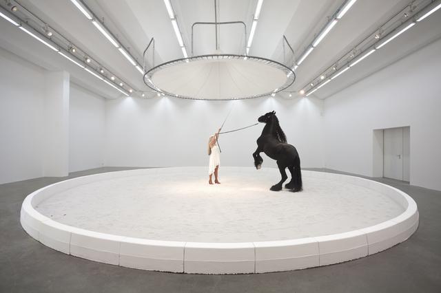 , 'Blinder Beifall: Pferd,' 2016, SEXAUER Gallery