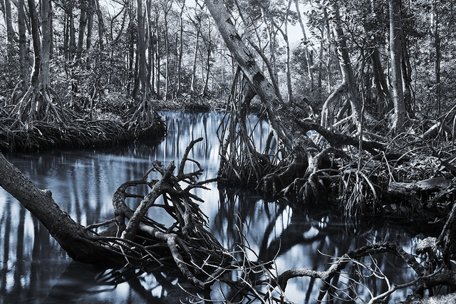 , 'World Beyond the Water,' 2009, Art Mûr