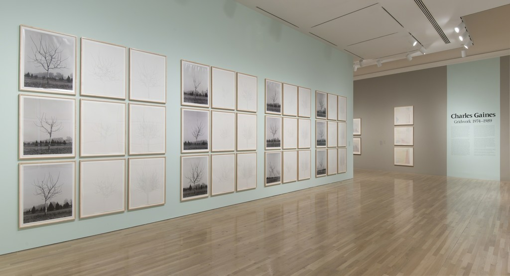 Charles Gaines: Gridwork 1974-1989. Installation view at the Hammer Museum, Los Angeles. February 8-May 24, 2015. Photography by Brian Forrest.