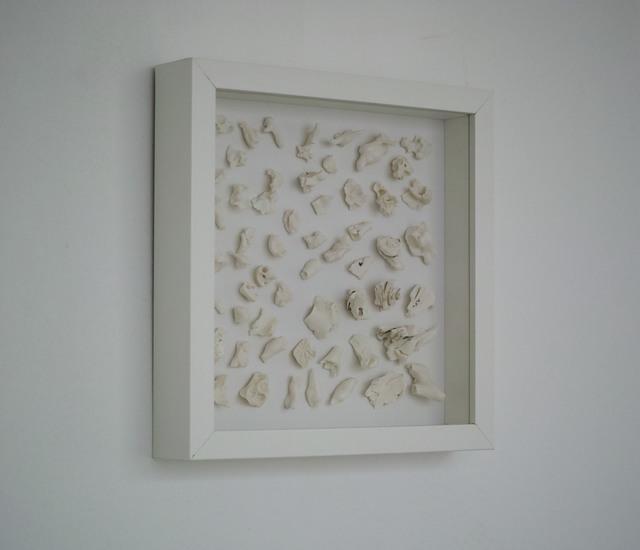 , '干燥植物 Herbarium ,' 2017, Amy Li Gallery