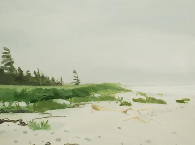 Sara MacCulloch, 'Tree & Beach', 2012, Kathryn Markel Fine Arts