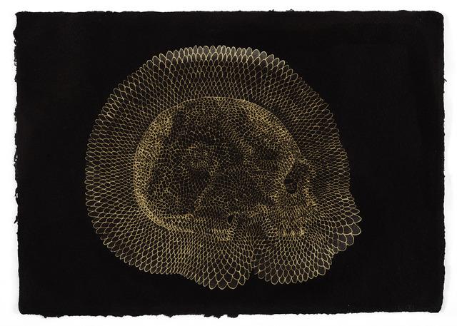 , 'Skull,' 2013, Goodman Gallery