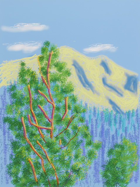 ", '""Untitled No.9"" from ""The Yosemite Suite"",' 2010, Pace Gallery"