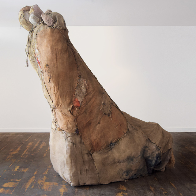 , 'Carmen's Foot,' 2017, Anima Mundi