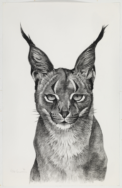 , 'Caracal Observing,' , Sladmore Contemporary