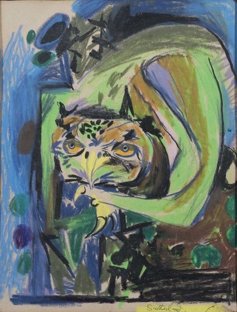 , 'Study of an Owl,' 1961, Osborne Samuel