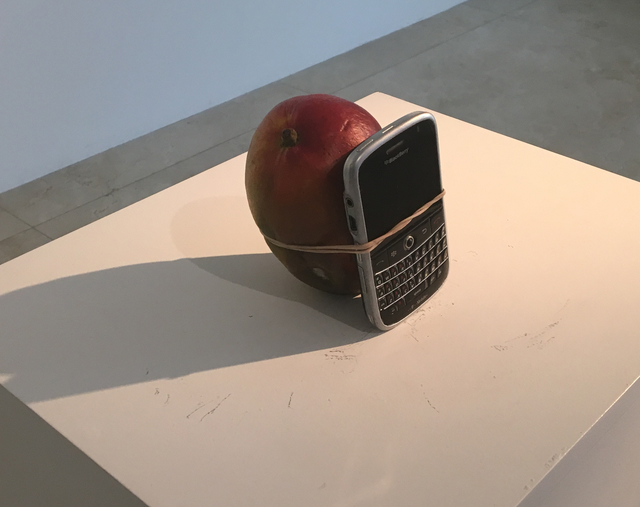 , 'Look at the Size of this Mango ,' 2011, MALBA