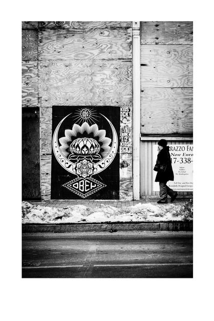 Jon Furlong, 'Cold Lotus', 2015, Subliminal Projects