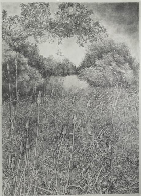, 'Diana's Field 2,' 2018, Resource Art
