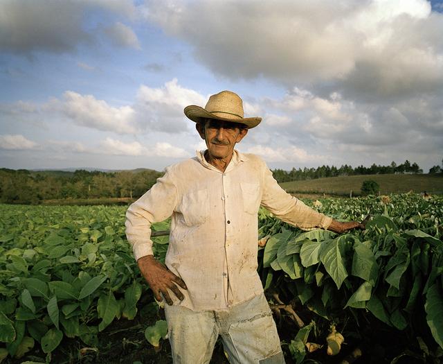 , 'Man in a Tobacco Field I, Pinar del Rio ,' 2005, Wall Space Gallery