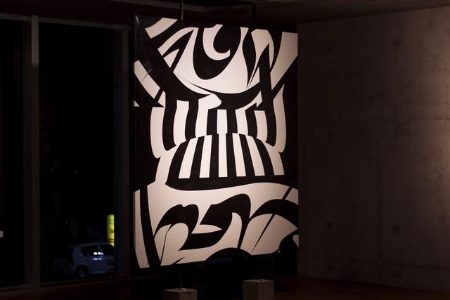 , 'Escritos de la memoria,' 2003, Museo de Arte Contemporáneo de Buenos Aires