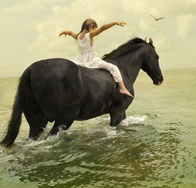, 'Marwari Stallion #1,' , Gilman Contemporary