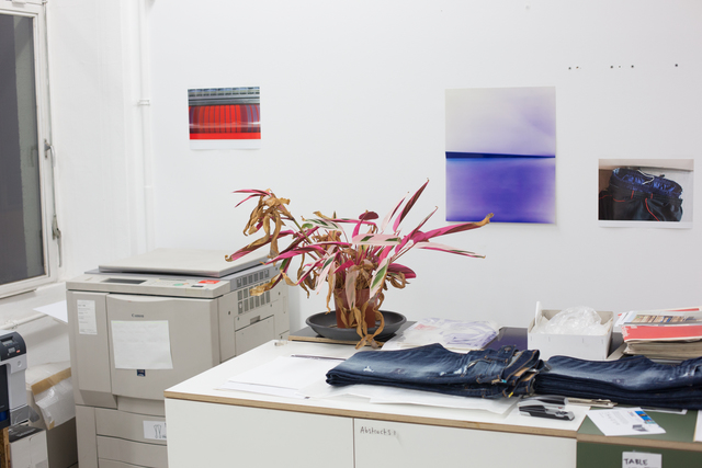 Wolfgang Tillmans, 'Plant life, c', 2013, Outset Benefit Auction