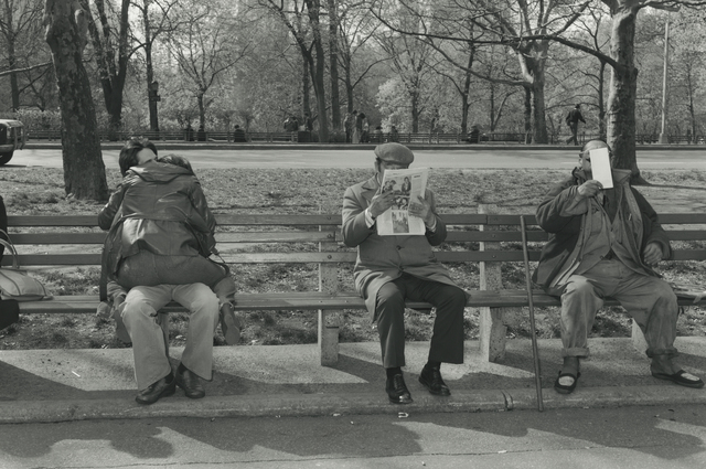 , 'Central Park,' 1979, Pace/MacGill Gallery