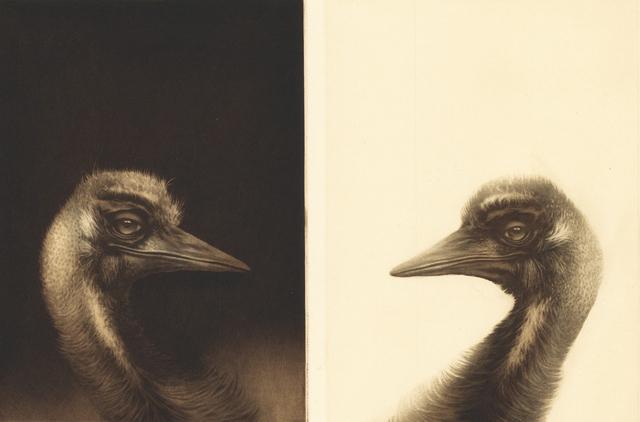 , 'Heads, birds,' 2017, Kunstverket Galleri