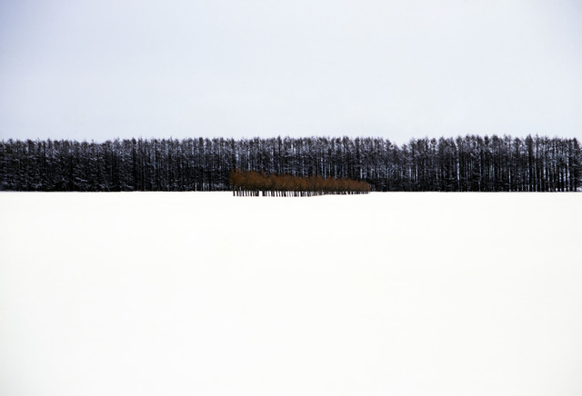 , 'Hokkaido, Japan,' 2003, Magnum Photos