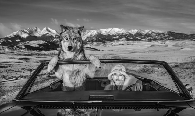 David Yarrow, 'Once Upon a Time in the West', 2019, Isabella Garrucho Fine Art
