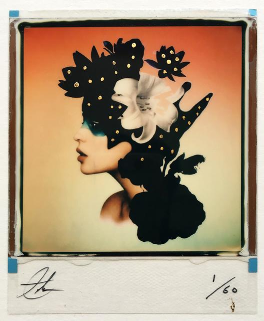 , 'Broken Blossom (Color),' 2018, The Directed Art Modern