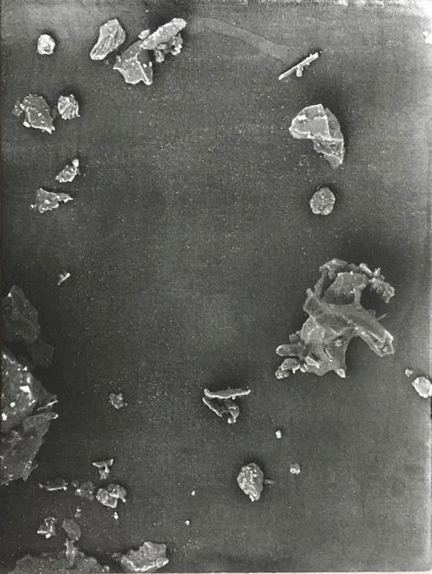 Caroline Corbasson, 'Fields', 2017, Galerie Laurence Bernard