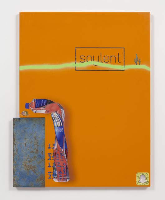 , 'soylent,' 2016, Steve Turner