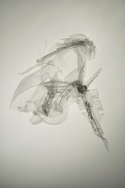 Laurent Lamarche, 'Translucida Organidée (échantillons 3', 2009, Art Mûr