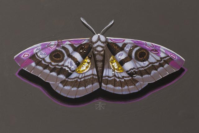 , 'Moth II,' , Haven Gallery