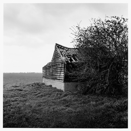 Paul Hart, 'South Drove', 2014, The Photographers' Gallery | Print Sales