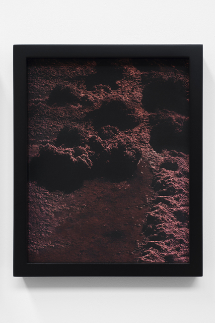 , 'Red, Red Ground,' 2014, Wil Aballe Art Projects | WAAP