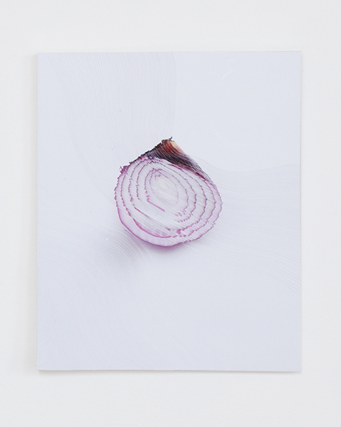 """Slicing the Onion No. 002"" Series 6 of 6 : 3-D wall sculpture unique engraved in layers of photographic work, 2015 by Nerhol"