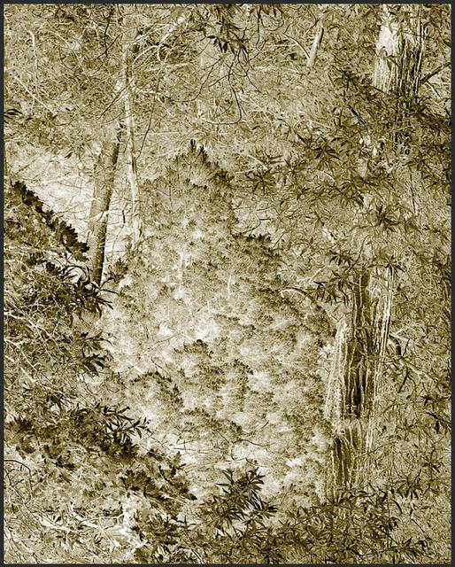 Clifford Ross, 'Harmonium V', 2007, RYAN LEE