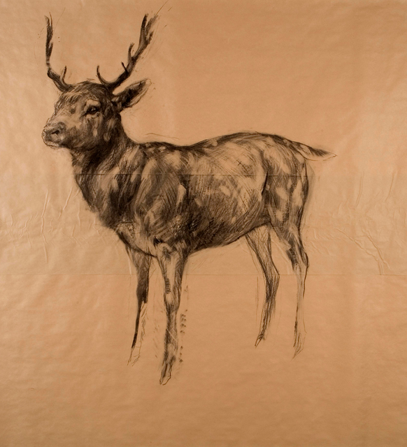 , 'Stag ,' 2009, Tayloe Piggott Gallery