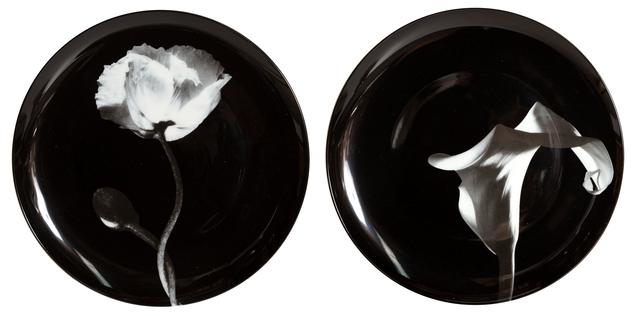 Robert Mapplethorpe, 'Pair of Porcelain Plates, Cala Lily and Poppy Flower', ca. 2000, Design/Decorative Art, Porcelain, RoGallery