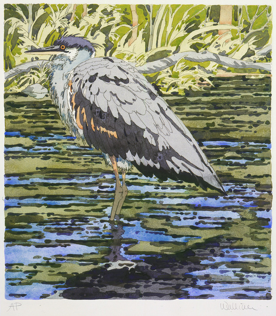 , 'Immature Great Blue Heron,' 1978, Alexandre Gallery