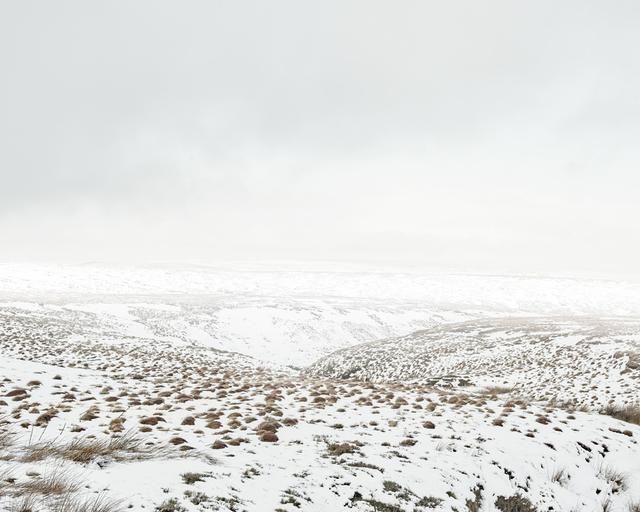 , 'Dean Head Moss, Saddleworth Moor,' 2015, ElliottHalls