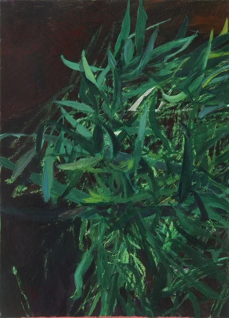 Dorothee Kreutzfeldt, 'From the hanging tree', 2018, blank projects