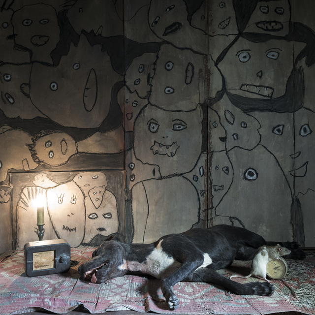 Roger Ballen, 'Sleeping Dog', 2018, Alex Daniels - Reflex Amsterdam