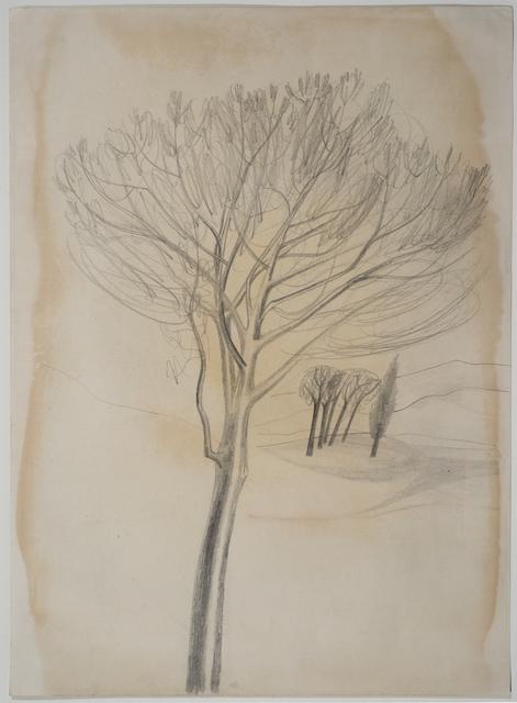 , 'Trees, Tuscany,' 1955, Crane Kalman Gallery