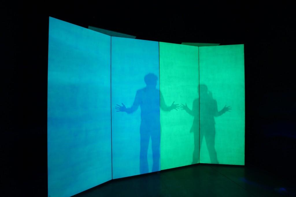 Alberto Biasi - Eco, 1974  Eco, dove l'ambiente è costituito da pannelli fotosensibili che catturano l'ombra fugace di chi vi si accosta. Ed è come se l'opera si compisse nel semplice tocco, nel leggero contatto, nel corpo che sparisce.