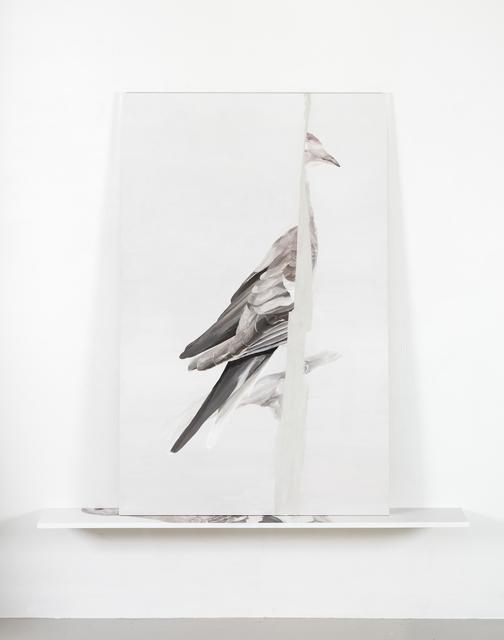 , 'Extinction II (Martha),' 2018, Galerie Anhava